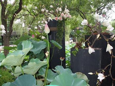 Suzhou garden China