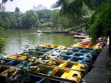rowing boats in renmin park