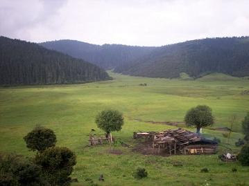 militang grasslands in shangri-la