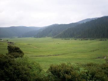 militang grasslands 3700 meter